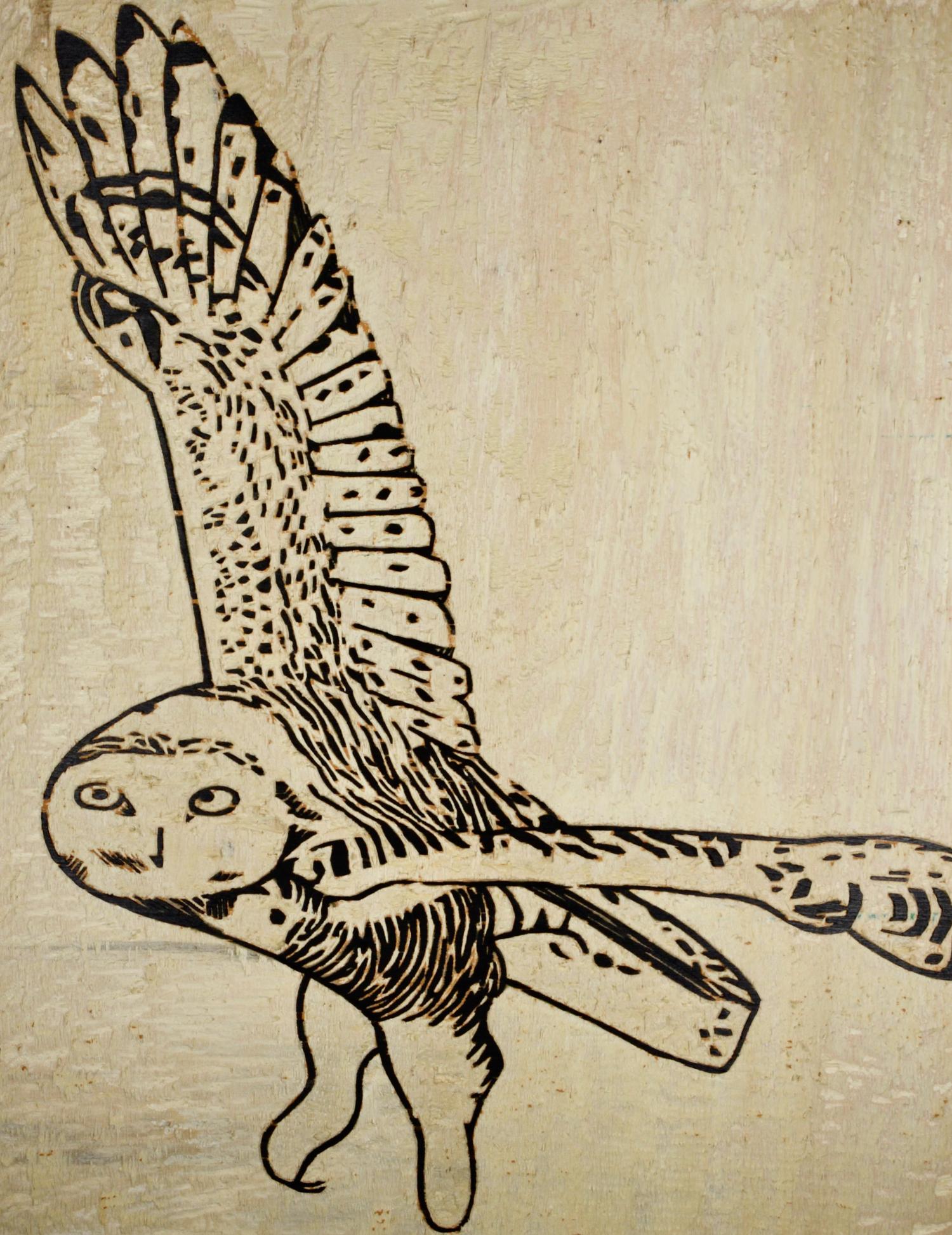 Snowy Owl woodcut, by Tara Marolf