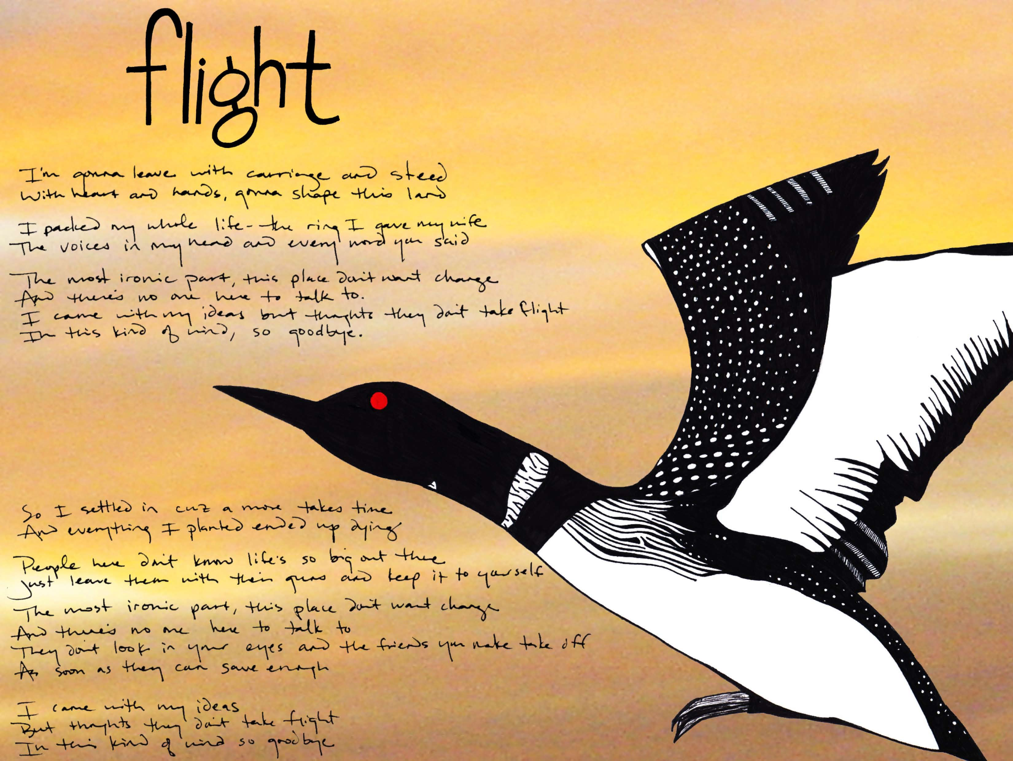 The Common Loon - Flight (Music Album Art), by Billy Reiter & Tara Marolf