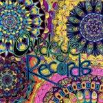 Ovaleye Records Flowers drawing, by Tara Marolf